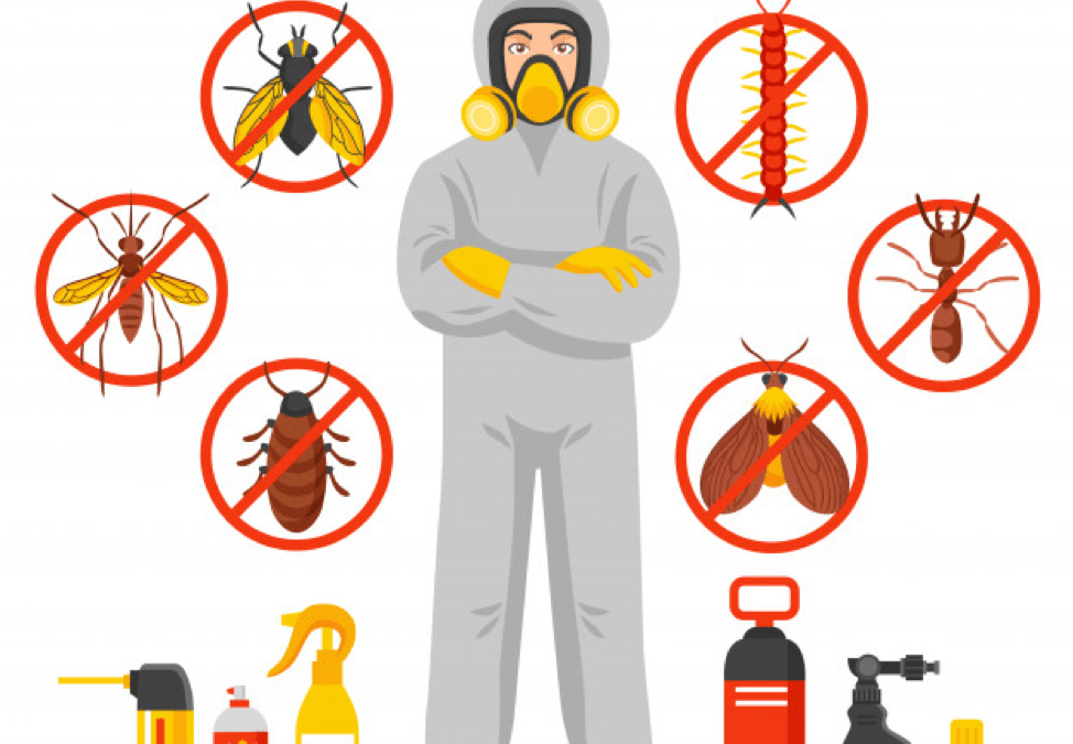 Pests You Need to Steer Clear of